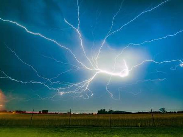 В Казахстане от удара молнии погибли 1,5 тысячи овец и пастух
