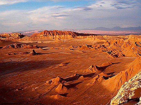 Самая засушливая пустыня в мире покрылась цветами