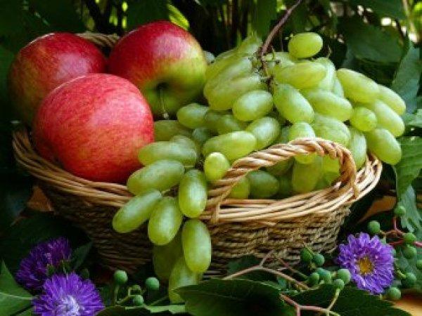 Какой сегодня праздник: 19 августа отмечается церковный праздник Яблочный Спас