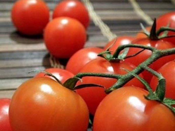 Турция пригрозила России ответными мерами на запрет ввода томатов