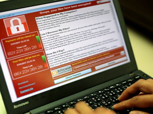 В США арестовали программиста, остановившего вирус WannaCry. В Минюсте объяснили за что