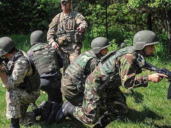"""""""Моська против слона"""": в Госдуме высмеяли военные учения Украины"""