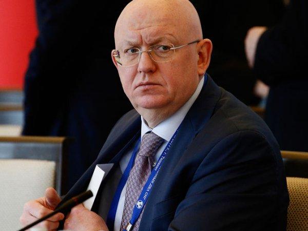 """""""Нет наглости и неприкрытой злости"""": Киев похвалил нового постпреда России при ООН"""