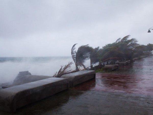 """Тропический шторм """"Мария"""" стал ураганом и готов обрушиться на разрушенные """"Ирмой"""" Карибы (ВИДЕО)"""