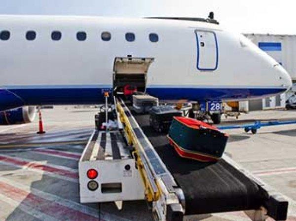 Минтранс ограничил провоз ручной клади в самолетах