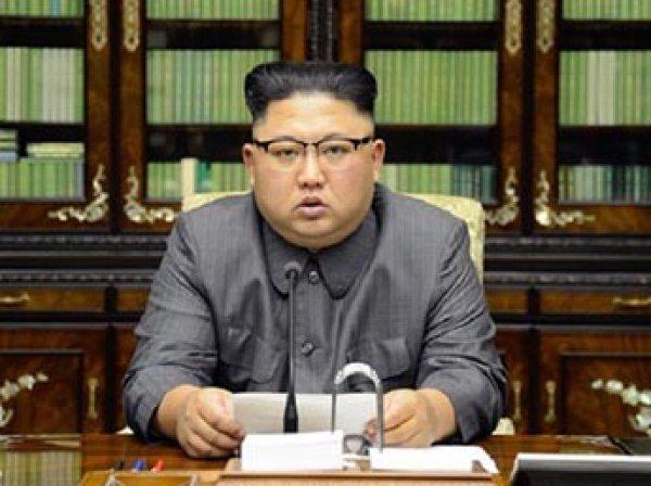 На соевом поле в Италии появился огромный портрет Ким Чен Ына