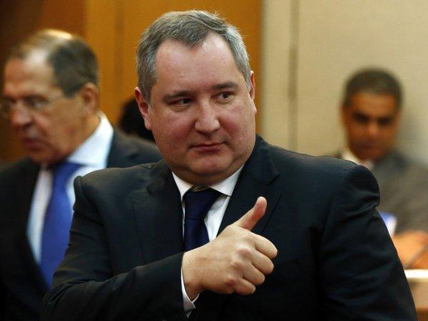 """Рогозин заберет себе пережившую """"утопление"""" таксу"""