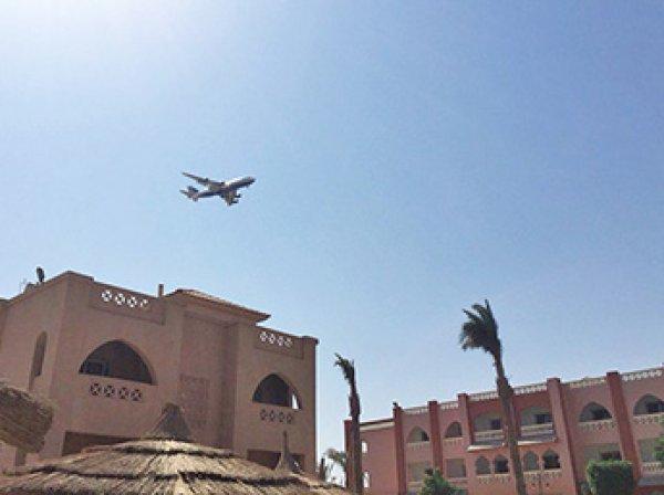 Стало известно, когда возобновиться авиасообщение между Россией и Египтом