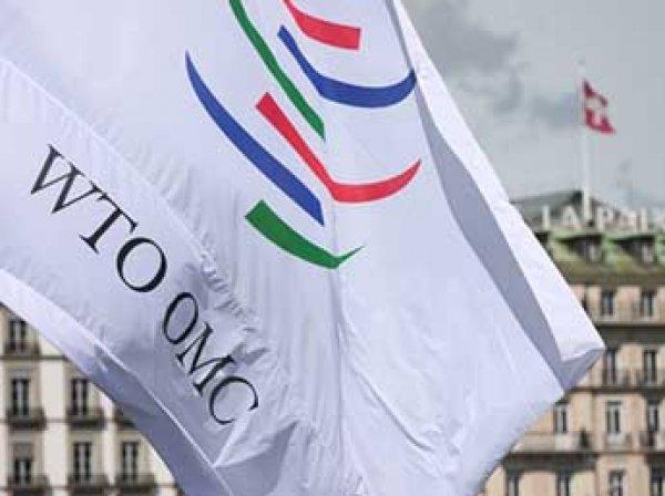 ИноСМИ рассказали о катастрофических последствиях выхода России из ВТО