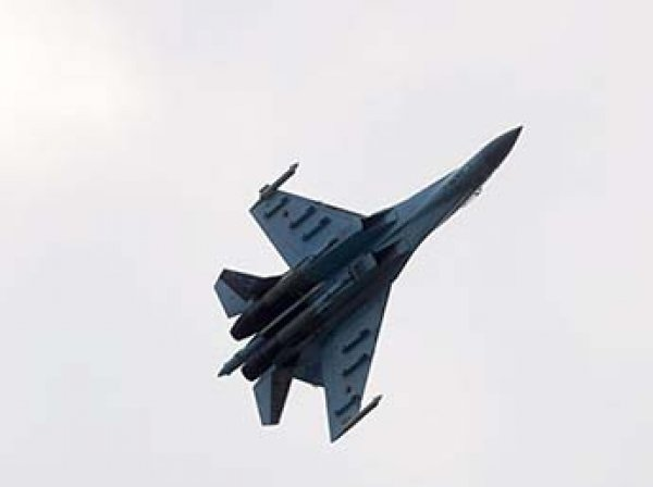США опубликовали видео перехвата самолета-разведчика российским Су-27
