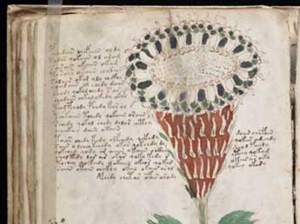 Искусственный интеллект расшифровал первую фразу самой загадочной рукописи XV века