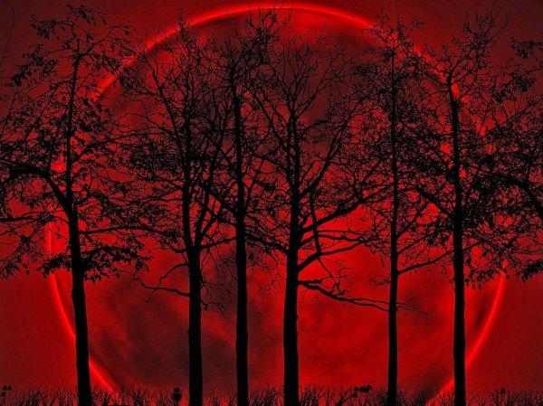 Лунное затмение 27 июля 2018: во сколько начало, где смотреть онлайн, влияние на знаки зодиака (ВИДЕО)