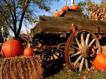 Какой сегодня праздник 30 октября 2018 в России и мире: народный церковный праздник по православному календарю 30.10.2018