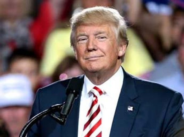 СМИ: Трамп сколотил состояние, помогая отцу уклоняться от уплаты налогов