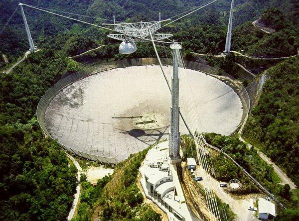 """""""Нас обнаружили"""": телескоп Arecibo поймал радиосигналы с угрозами землянам"""