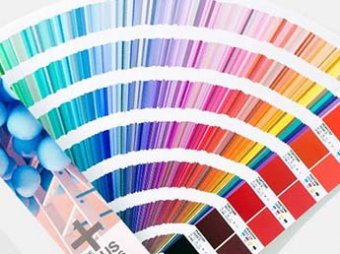 Институт Pantone выбрал главный цвет 2019 года