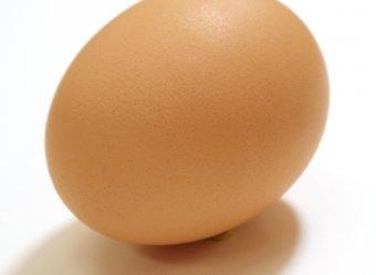 Фото куриного яйца побило мировой рекорд в Instagram