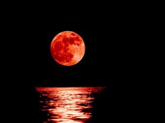 «Луна превратится в кровь»: скрытые библейские тексты предсказывают конец света уже через 4 дня