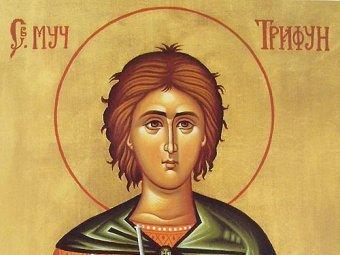 Какой сегодня праздник 14 февраля 2019: церковный праздник Трифонов день отмечается в России