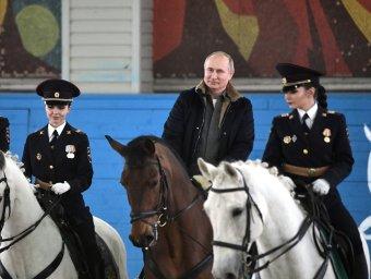 Тренажер, массажер и ухажер: Путин на непокорном полицейском коне поздравил женщин с 8 Марта (ВИДЕО)