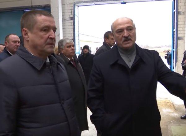 """""""Вы что - больные?"""": Лукашенко жестко уволил губернатора, сравнив агрохолдинг с Освенцимом"""