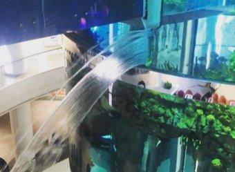 """В московском ТЦ «Океания» прорвало самый большой в мире аквариум с панорамным лифтом"""""""