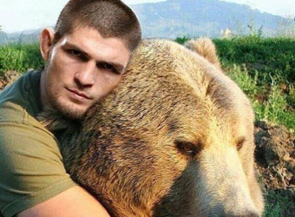Нурмагамедов снова схватился с медвежонком (ВИДЕО)