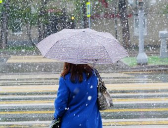 Прогноз погоды Гисметео на 7 дней: наступившее в мае тепло сменят холод и дожди
