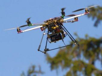СМИ: дроны займутся сбором информации о дачниках