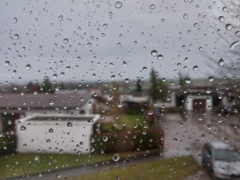 Прогноз погоды Гисметео на последнюю неделю мая: новости о сильных дождях в Санкт-Петербурге и Москве