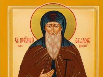 Какой сегодня праздник 29 мая 2019: церковный праздник Федор Житник отмечают в России