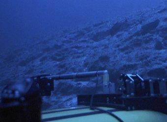 На дне Марианской впадины обнаружили неожиданную находку (ФОТО, ВИДЕО)