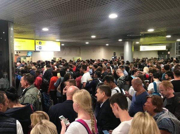 Очередной коллапс в Шереметьево: пассажиры часами не могут получить багаж