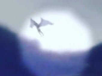 Пришелец с Нибиру впервые попал на видео