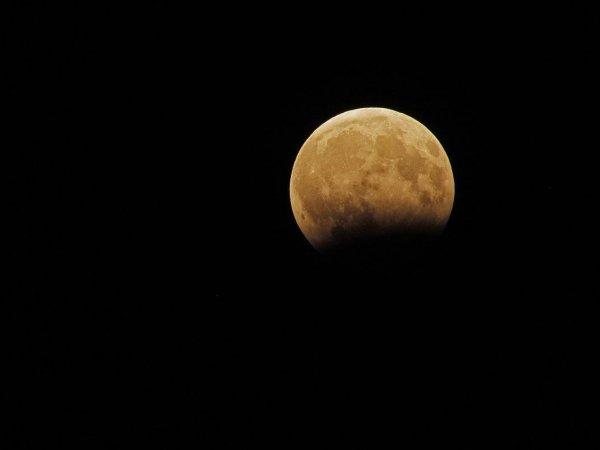 """""""Будет много смертей"""": жуткое пророчество про Лунное затмение 17 июля 2019 года попало в Сеть"""