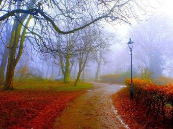 Погода на месяц: и что нам обещают в Гисметео, Фобос, Гидрометцентре?