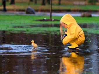 Погода в Москве на 14 дней: по прогнозу, как у ребенка - будет тепло и мокро