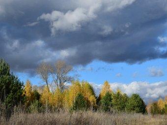 Прогнозы погоды на 14 дней: новости от Гисметео, Фобос и Гидрометцентра