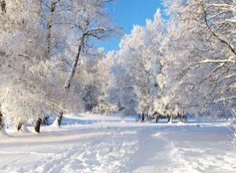 Россию ждет аномальный холод