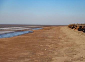 Фото обмелевшего за 100 метров от берега дна Азовского моря потрясло Сеть