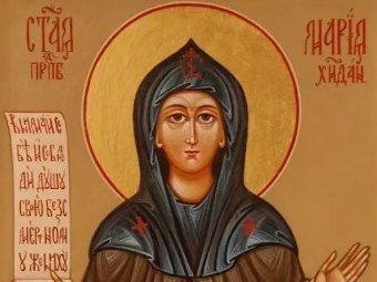 Какой сегодня праздник 11 ноября 2019: церковный праздник Аврамий Овчар и Анастасия Овечница отмечают в России