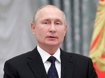 Поисковики нашли место захоронения брата Путина