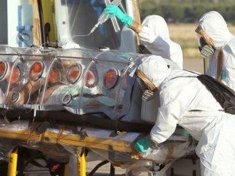 СМИ: иранский провидец предсказал гибель половины человечества от коронавируса