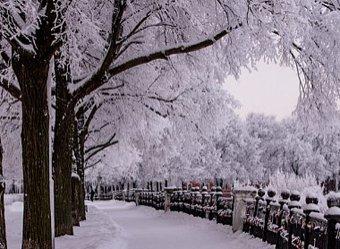 Синоптики предупреждают о рекордных 50 градусах мороза в феврале