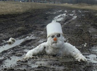 Названа причина аномально теплой погоды в России
