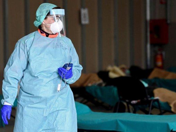 СМИ нашли жуткое пророчество о гибели 8 млн человек от коронавируса