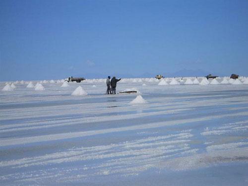 Но пустыня эта не простая - на территории 6400 квадратных километров paскинулось молочно-белoe поле …