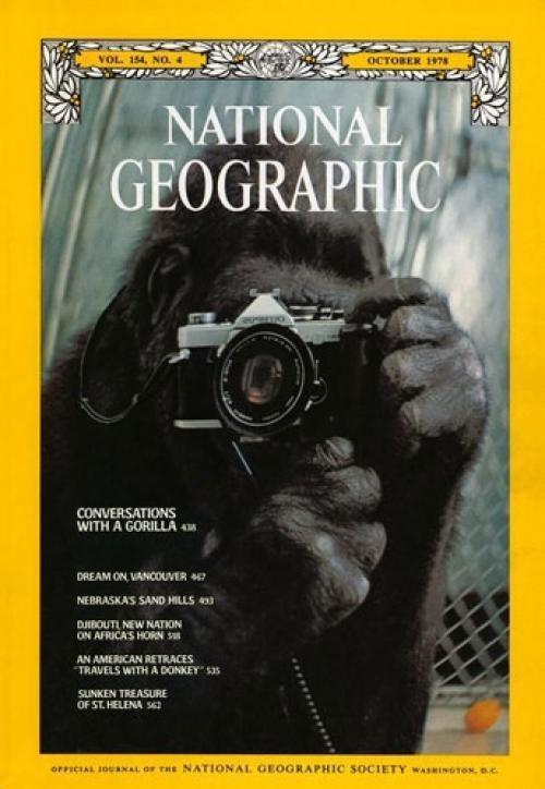 40. National Geographic, октябрь 1978 годаФотография гориллы с фотоаппаратом.