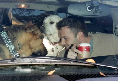 Схожесть собак и их знаменитых хозяев