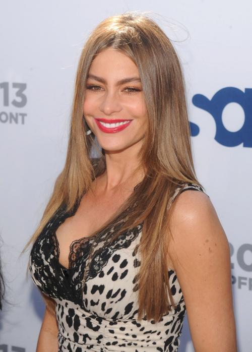 На вершине рейтинга самых высокооплачиваемых актрис второй год остается Софья Вергара, звезда сериала «Американская семейка». В минувшем году она заработала $30 млн.